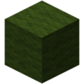 Minecraft wool 13.png